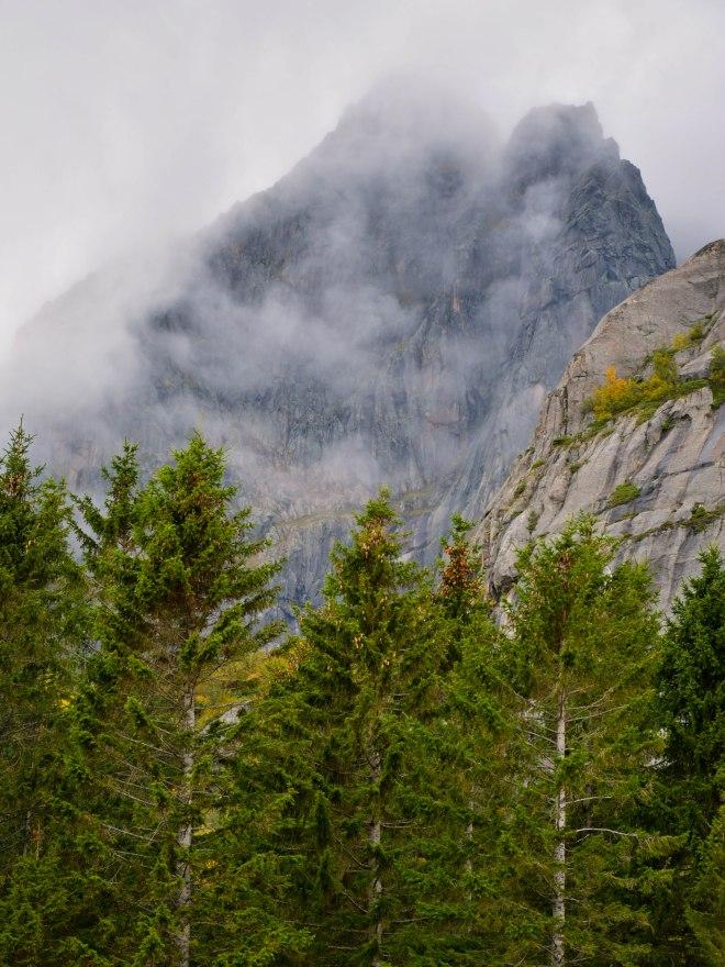 Vågakallen Lofoten