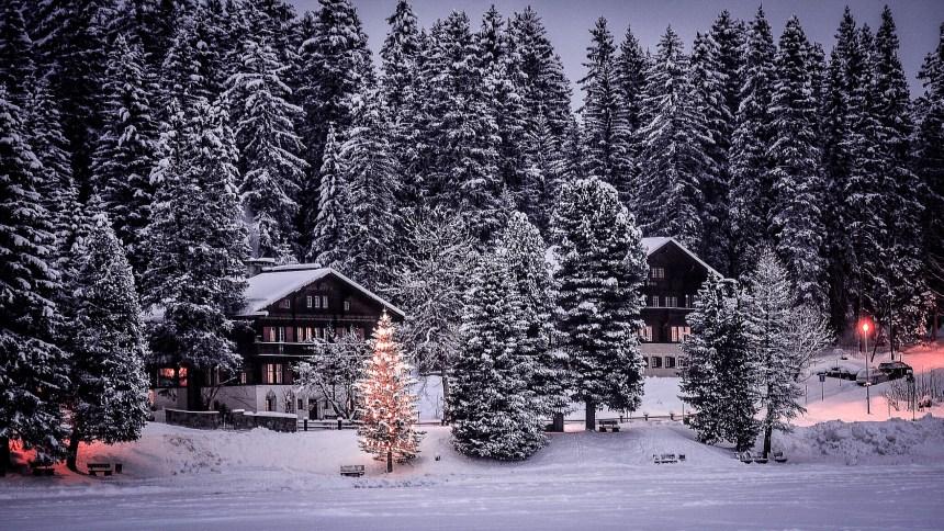 Winterwelten Arosa Lenzerheide Chalet Obersee Weihnachtstimmung Schnee Wald