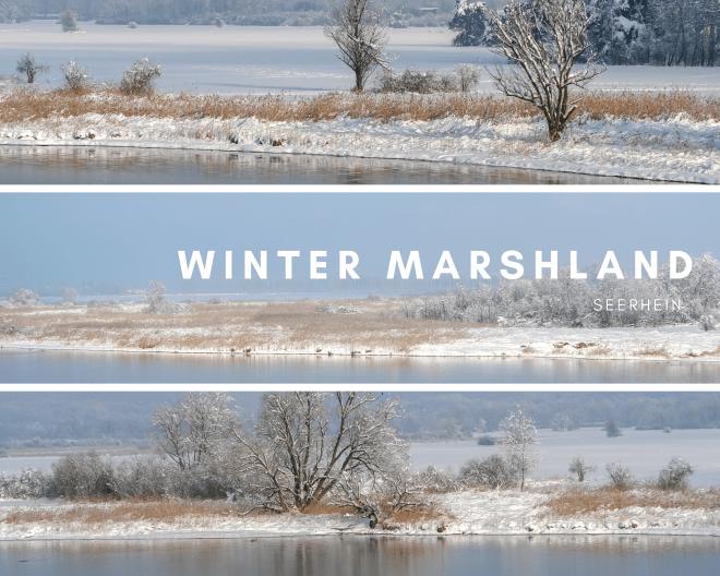 Das verschneite Wollmatinger Ried ist sehr reizvoll - Winter Marshland