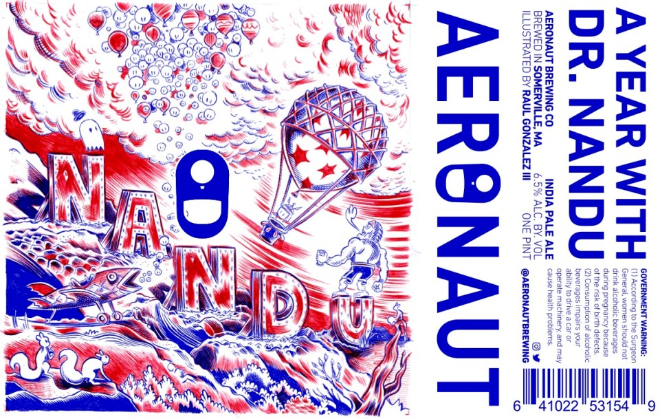 Aeronaut A Year with Dr. Nandu