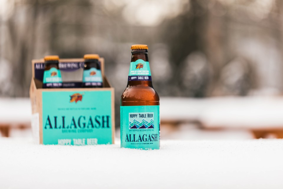 Allagash Hoppy Table Beer stock