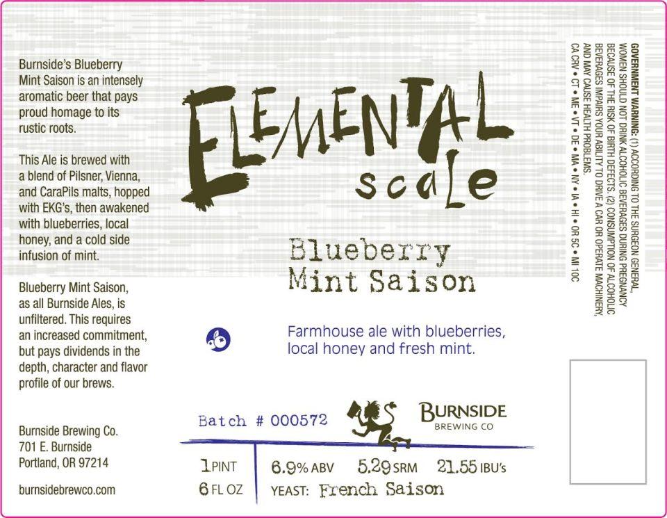 Burnside Blueberry Mint Saison
