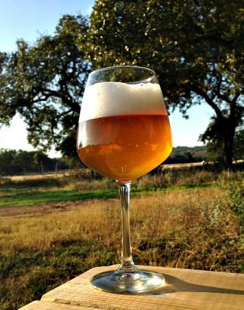 Jester King Bière de Blanc du Bois