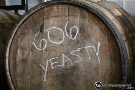 That's my new rap group I haven't started. 606 Yeasty.