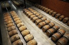 500 oak barrels. Soon to be triple decked.