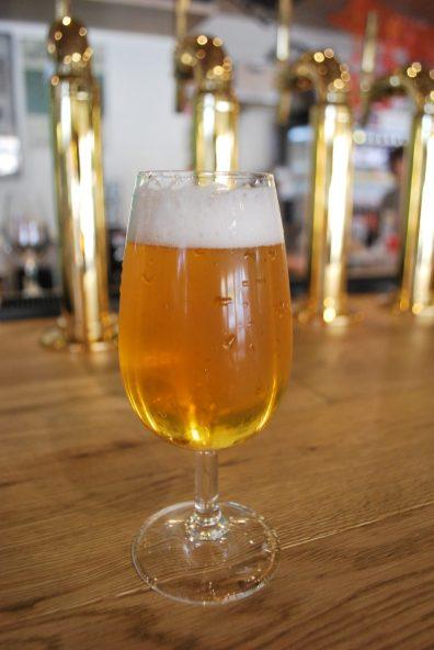 TDM1874 Beer 3