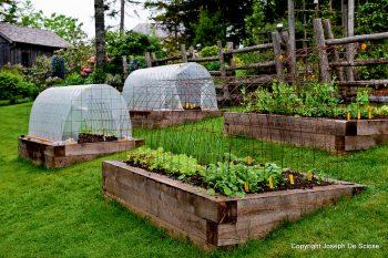landscape ideas for sloped yard spaces