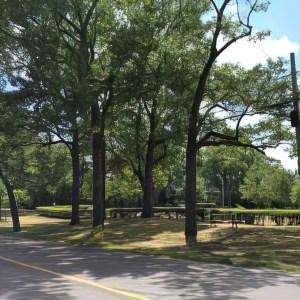 Lucy Maud Montgomey park