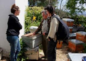 Encuentro con el apicultor local Manuel Vigilia, Bee Time 1 Primavera 2016