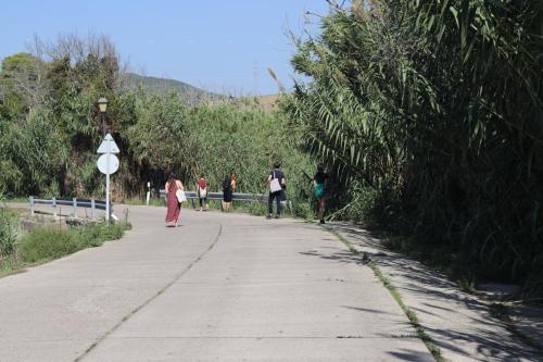 Sound Walk by Tyler Lewis in Santa Lucía