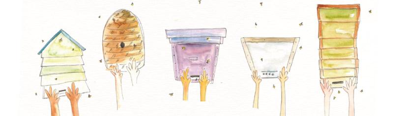 ¿Enjambre? Recogida, cuido y protección de la abeja melífera
