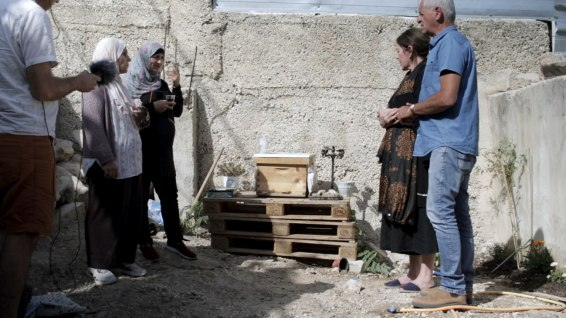 East Jerusalem - an altar for the bees made by Tharwat and her neighbors