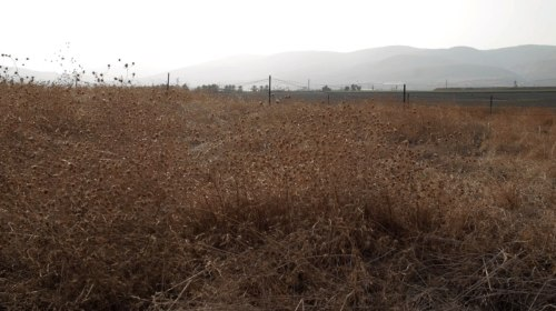 The valley between the Gilboa and the Jordanian mountain ranges