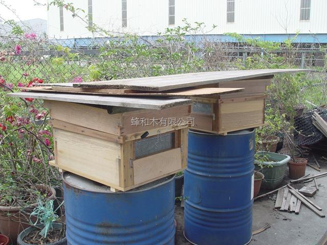 【養蜂·買賣】養蜂箱買賣 – TouPeenSeen部落格