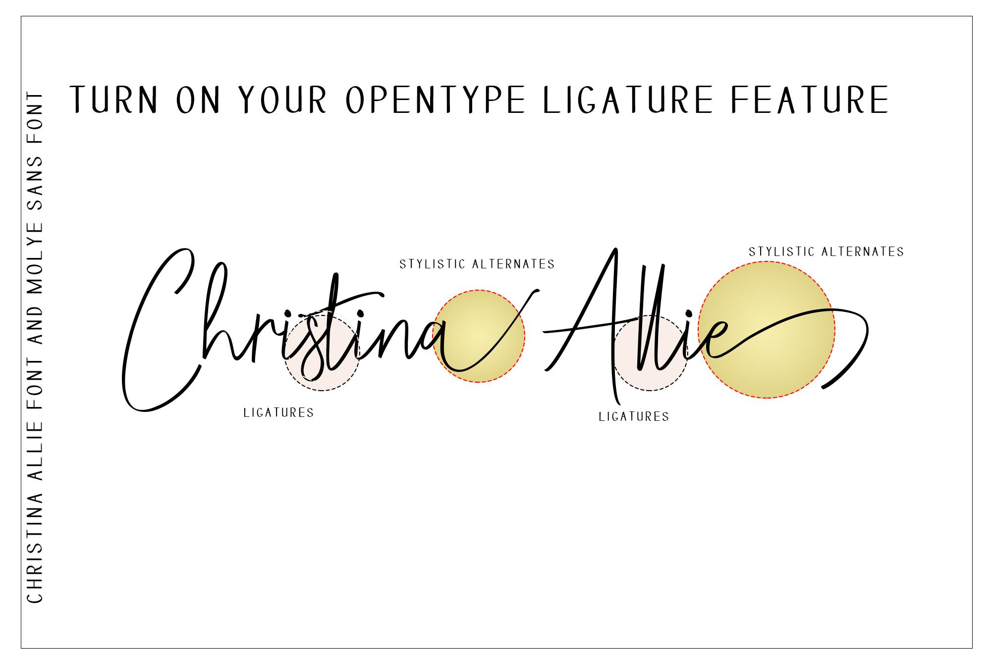 Cursive Writing Font List3 Fonts T Writing Fonts Fonts And