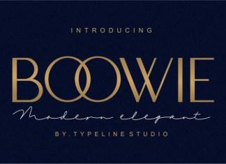 Boowie Sans Serif Font