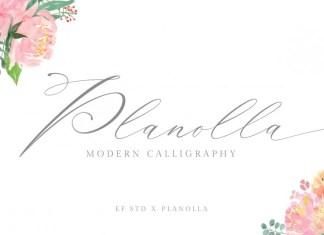 Planolla Calligraphy Font