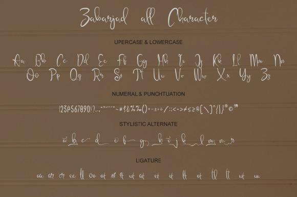 Zabarjad Calligraphy Font