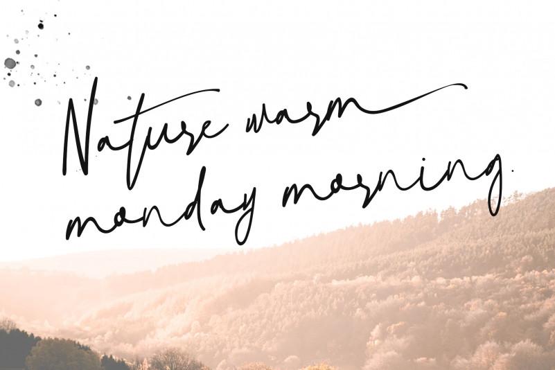 Download Natural Signature Font - Befonts.com