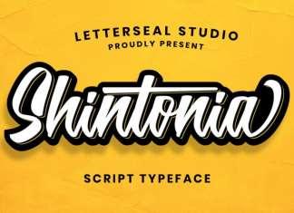 Shintonia Script Font