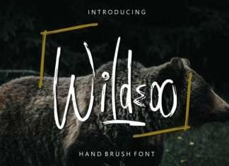 Wildeoo Brush Font