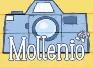Mollenio Display Font