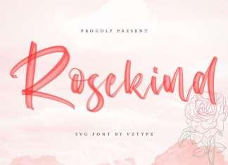 Rosekind Brush Font