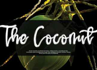 The Coconut Script Font