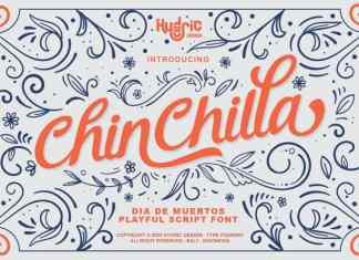 Chinchilla Script Font
