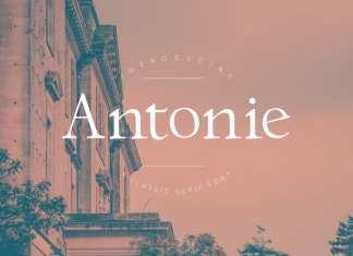 Antonie Serif Font