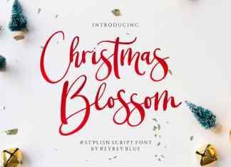 Christmas Blossom Font
