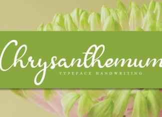 Chrysanthemum Handwritten Font