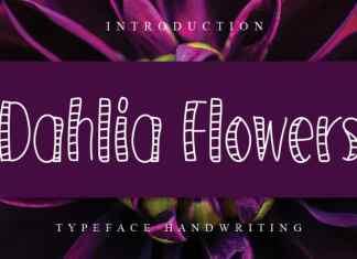Dahlia Flowers Display Font