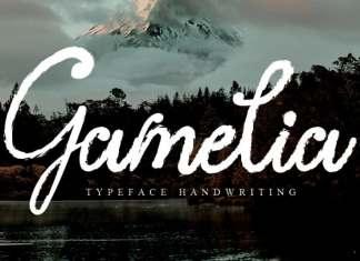 Gamelia Script Font