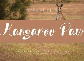 Kangaroo Paw Script Font