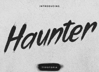 Haunter Display Font with Brush Style