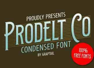 Prodelt Co