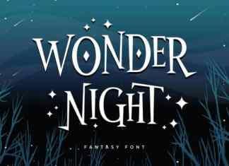 Wonder Night Display Font