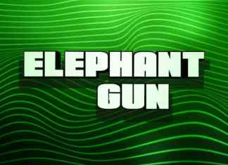 Elephant Gun Display Font