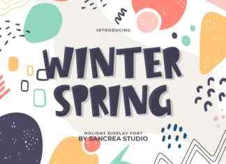 Winter Spring Display Font