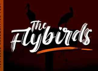 The Flybirds Brush Font