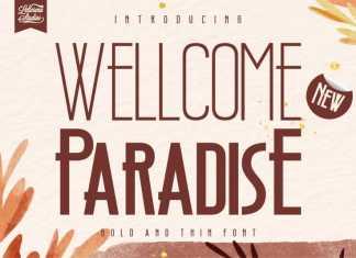 Wellcome Paradise Sans Serif Font
