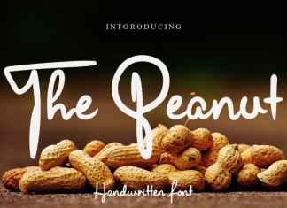 The Peanut Script Font