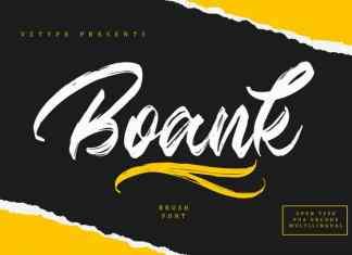Boank Brush Font