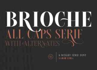 Brioche Serif Font
