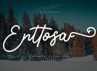 Enttosa Script Font
