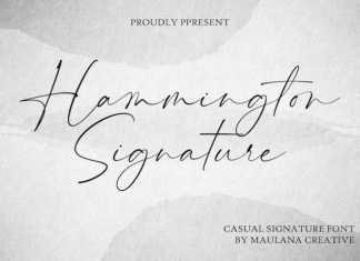 Hammington Script Font