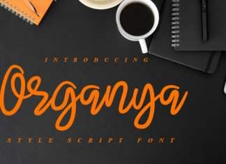 Organya Script Font