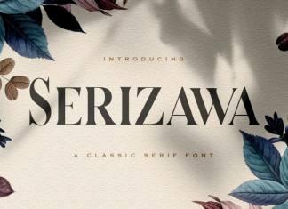 Serizawa Serif Font