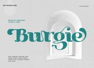 Burgie Black Serif Font